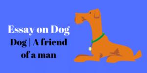 Dog _ A friend of a man essay