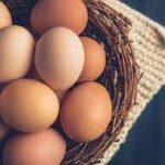 Eating Eggs in your Breakfast is Good for Health